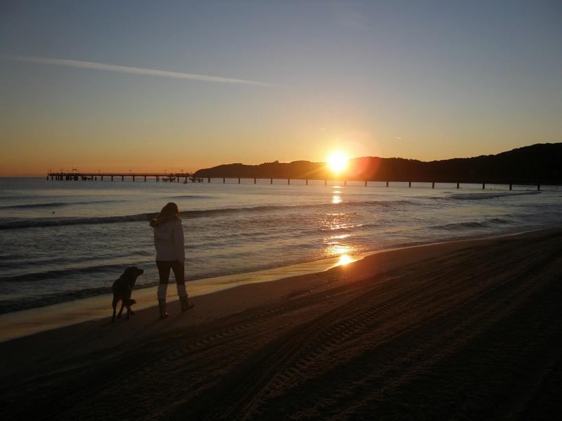 Sonnenaufgang mit Hund am Strand von Binz