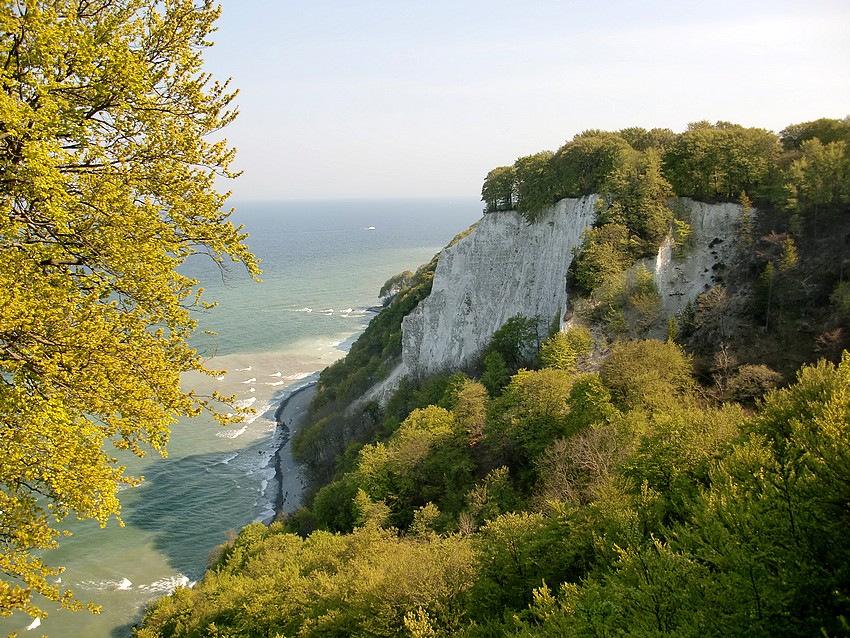 Die berühmten Kreidefelsen auf Rügen